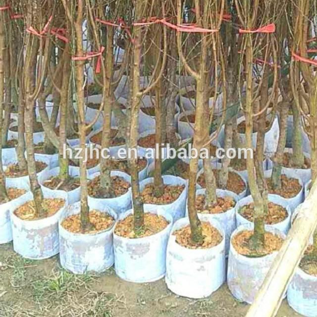 Մեծածախ ասեղ բռունցքներով Ոչ հյուսված գործվածք Plant Grow Bag